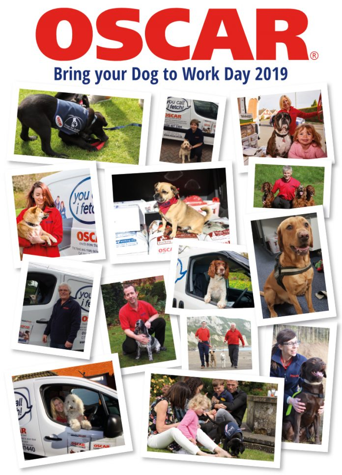 Bring Your Dog To Work Day 2019