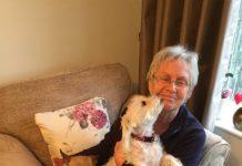 UK Dog Remembrance Month